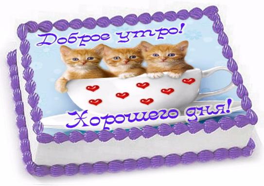 Торт Tortas Торт «Любимая» №2 - фото 1