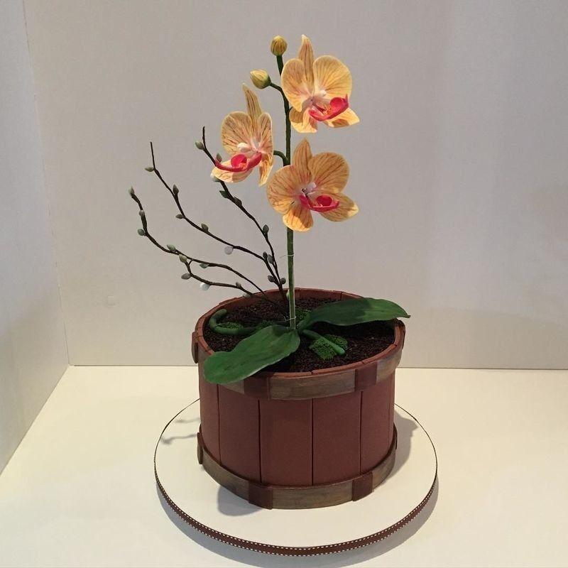 Торт Заказторта.бай Тематический торт №5 - фото 1