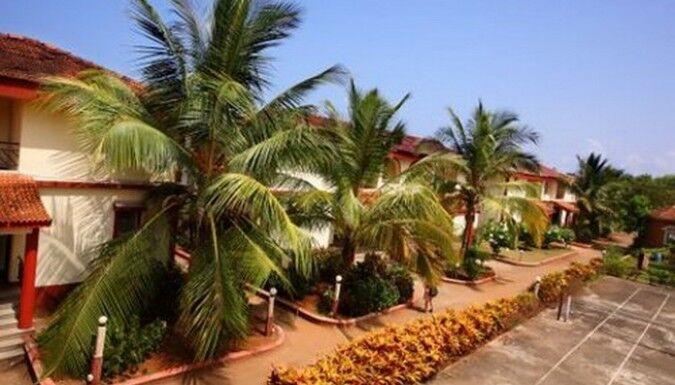 Туристическое агентство EcoTravel Пляжный авиатур в Индию, Гоа, Colonia Jose Menino 2* - фото 4
