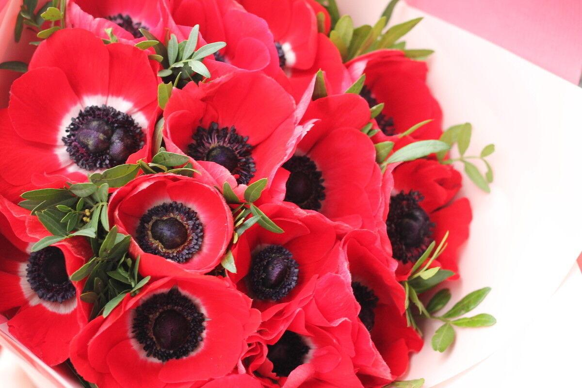 Магазин цветов Cvetok.by Букет «Страсть красавицы» - фото 3