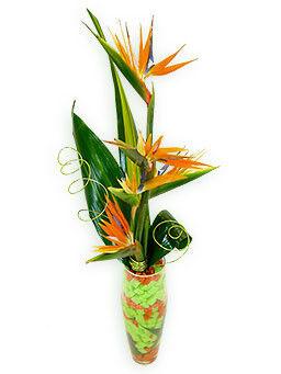 Магазин цветов Фурор Букет «Колибри» - фото 1