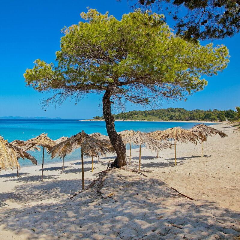 Туристическое агентство ТиШ-Тур Комбинированный автобусный тур «Греция: отдых на Халкидиках» - фото 1