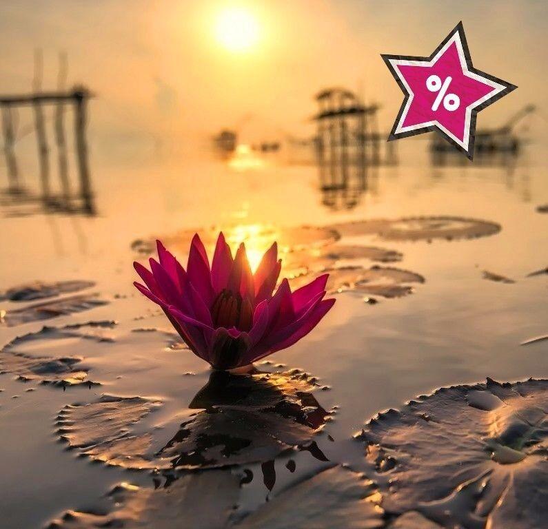"""Туристическое агентство Южный край Таиланд. Экономия до 45% по Акции """"Раннее Бронирование"""" - фото 1"""