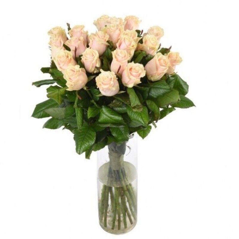 Магазин цветов Florita (Флорита) Роза TALEA (Талея) 60 см - фото 2