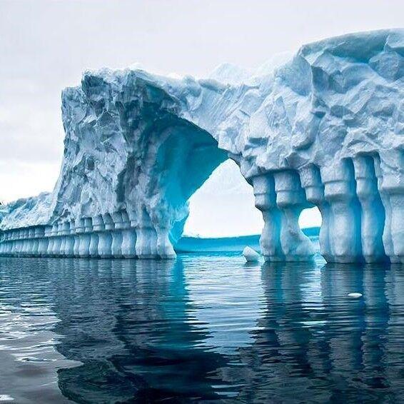 Туристическое агентство A La Carte Экскурсионный круиз «Антарктика Экспресс» - фото 1