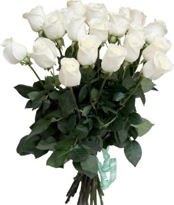 Магазин цветов Florita (Флорита) Роза AKITO (Акито) 60 см - фото 2