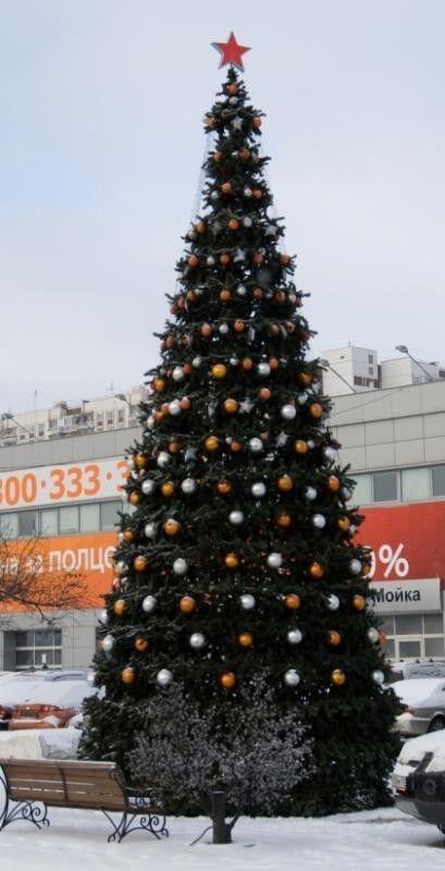 Елка и украшение GreenTrees Уличная ель «Уральская», 7м - фото 3