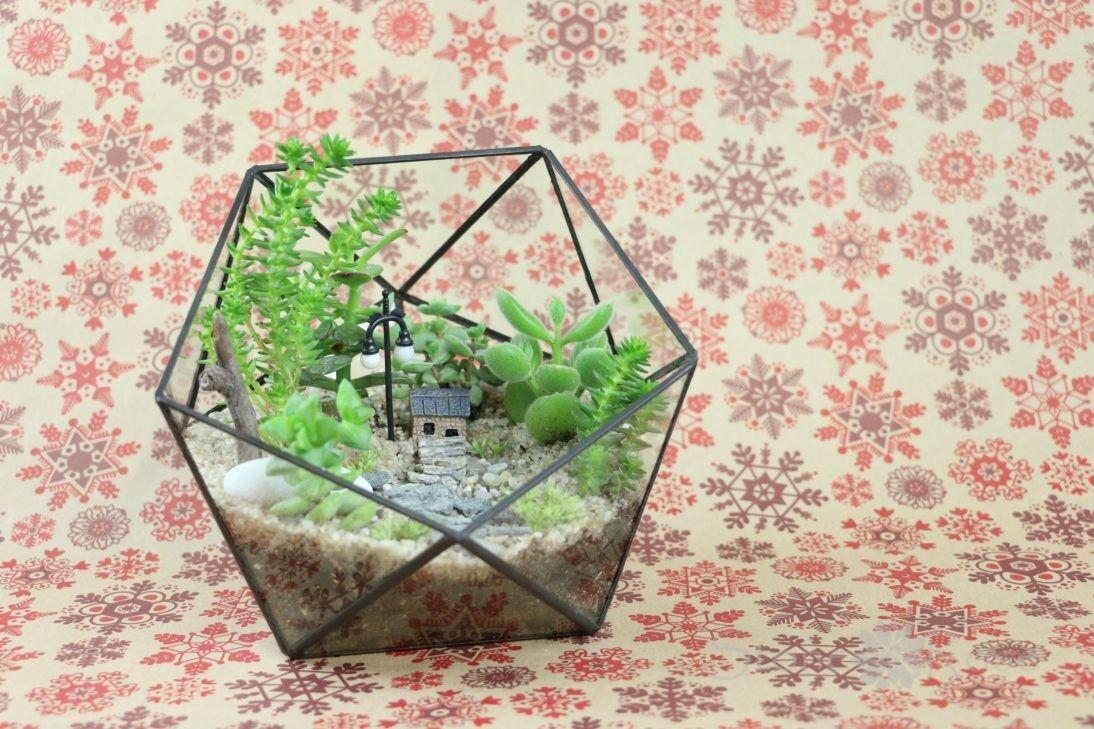 Магазин цветов Stone Rose Мини-сад во флорариуме «Икосаэдр» - фото 1