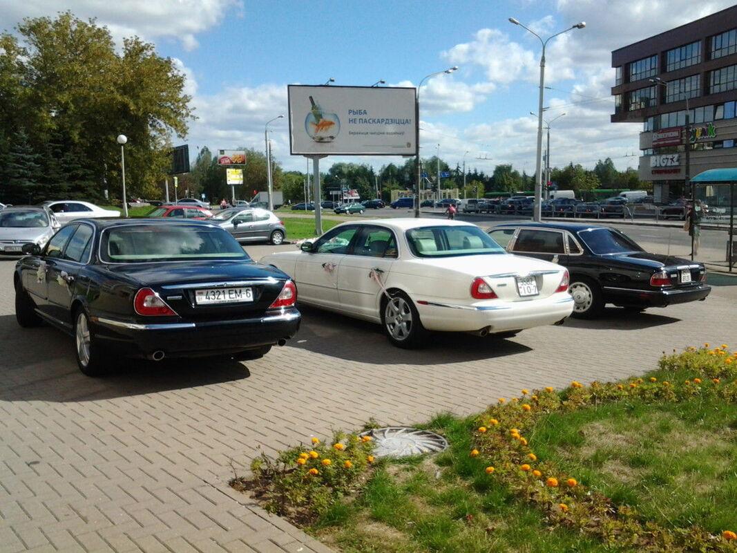 Аренда авто Jaguar XJ8 - фото 3
