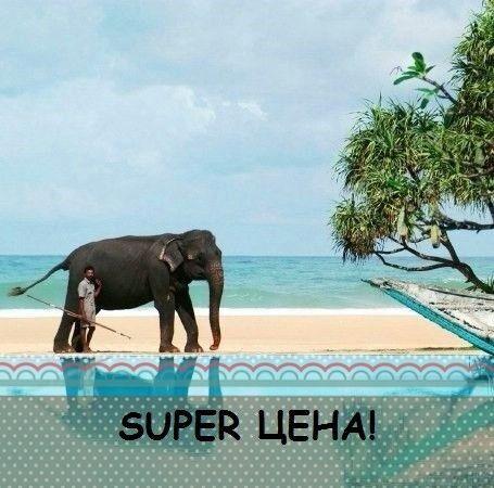 Туристическое агентство Южный край Пляжный тур на Шри-Ланку - фото 1