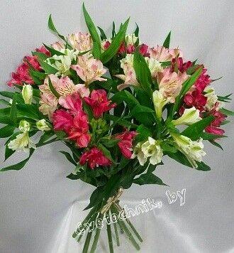 Магазин цветов Цветочник Букет «Альстромерия микс» - фото 1