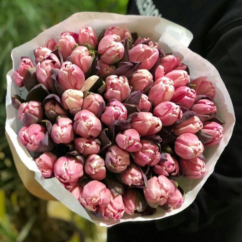 Магазин цветов Прекрасная садовница Тюльпан Flirty pink - фото 1