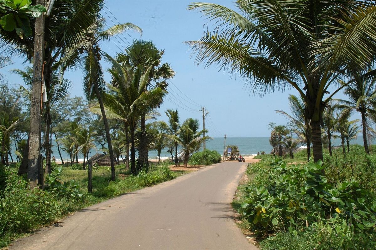 Горящий тур VIP TOURS Индия, ГОА, отдых для непритязательных туристов!!! - фото 2