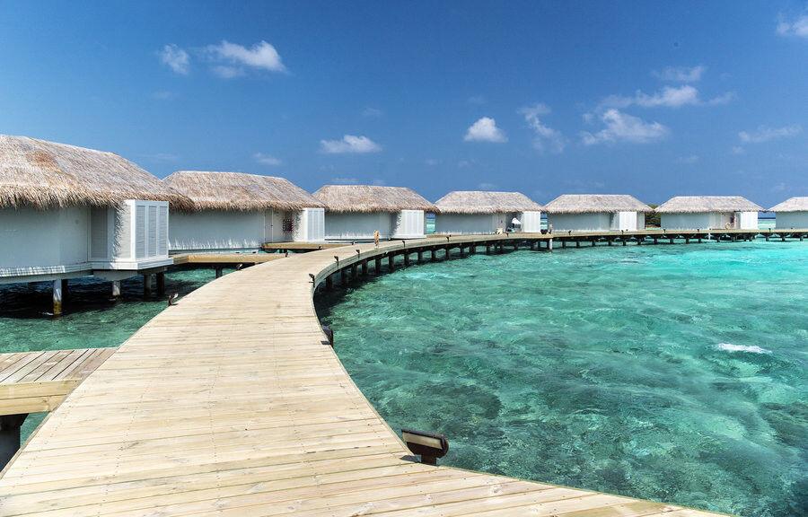 Туристическое агентство Jimmi Travel Отдых на Мальдивах, Chaaya Island Dhonveli 4* - фото 3