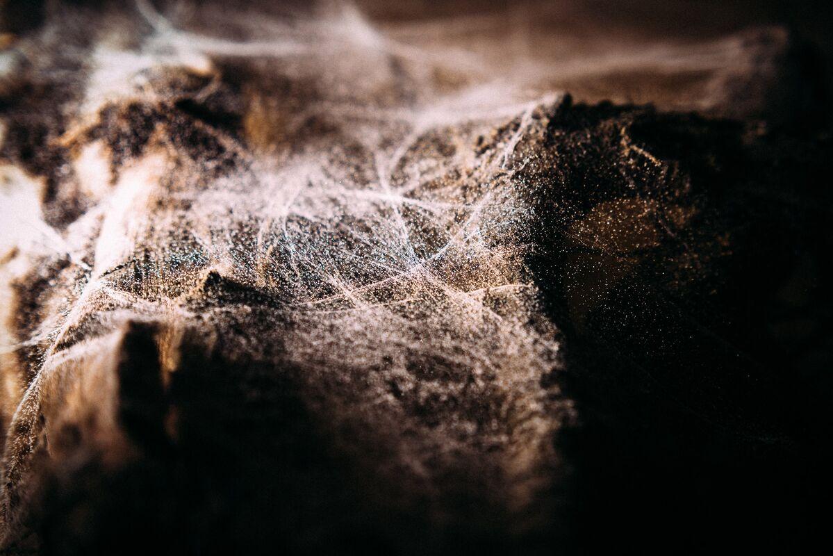 Квест Kventin Хоррор-квест «Забвение» на 3 чел. - фото 3