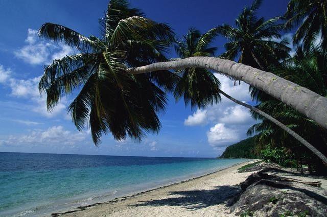 Туристическое агентство ТрансАвиа Пляжный авиатур «Зажигательная Куба» - фото 4