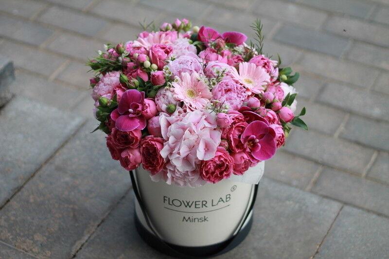 Магазин цветов Cvetok.by Коробочка «Гортензия и орхидея» - фото 1
