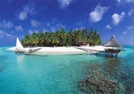 Туристическое агентство Jimmi Travel Отдых на Мальдивах, Sun Island Resort 5* - фото 2