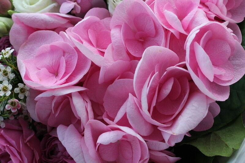 Магазин цветов Cvetok.by Букет «Экзотический сад» - фото 3