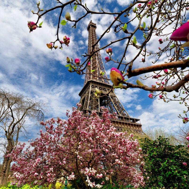 Туристическое агентство Визавитур Автобусный тур «Мечты сбываются в Париже!» - фото 1
