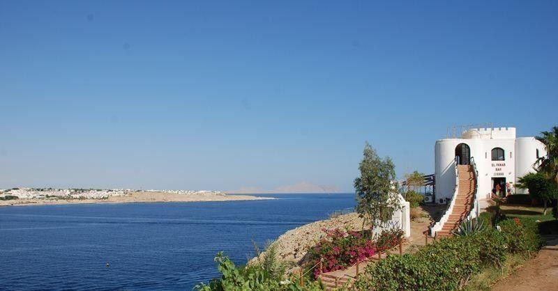 Туристическое агентство Санни Дэйс Пляжный авиатур в Египет, Шарм-Эль-Шейх, The Regnum Hotel 4* - фото 9