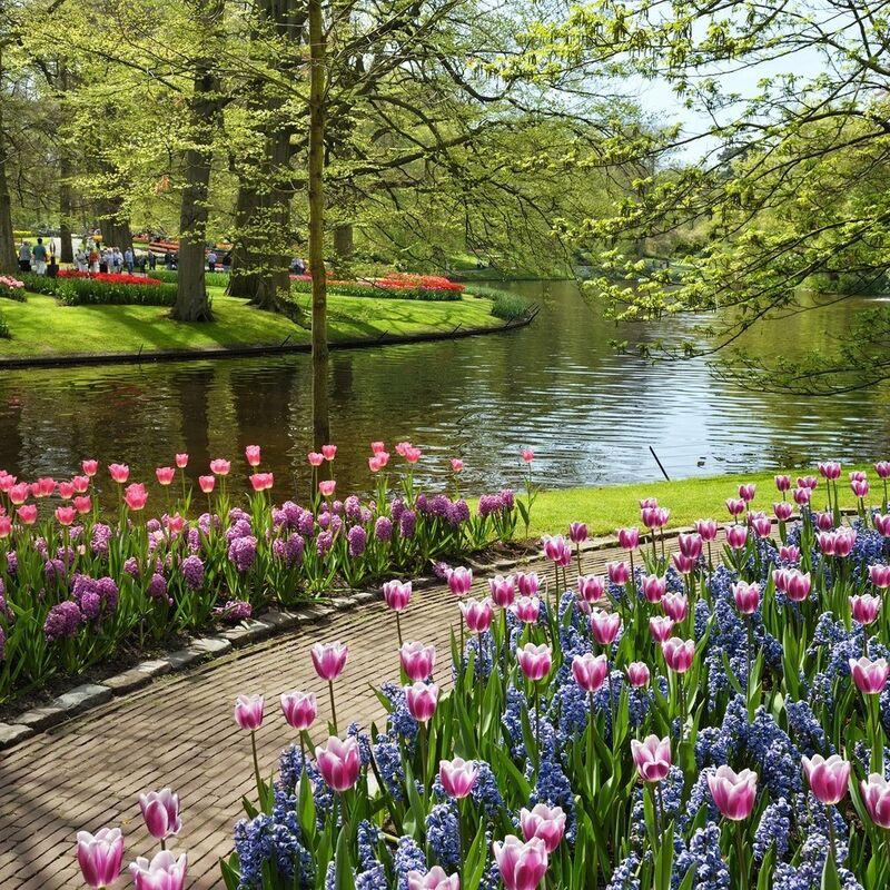 Туристическое агентство Вокруг Света Экскурсионный авиатур «Парад цветов в Голландии» - фото 1