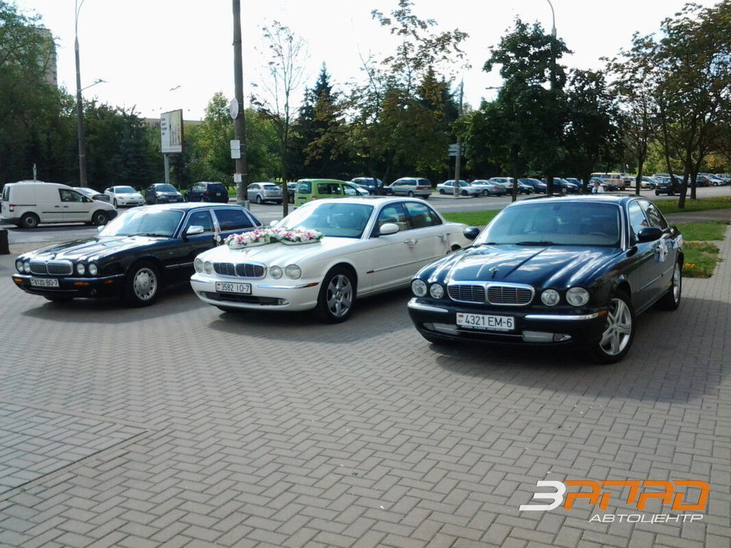 Аренда авто Jaguar XJ8 - фото 1