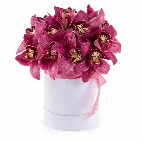 Магазин цветов Фурор Орхидея Цимбидиум в круглой коробке - фото 1