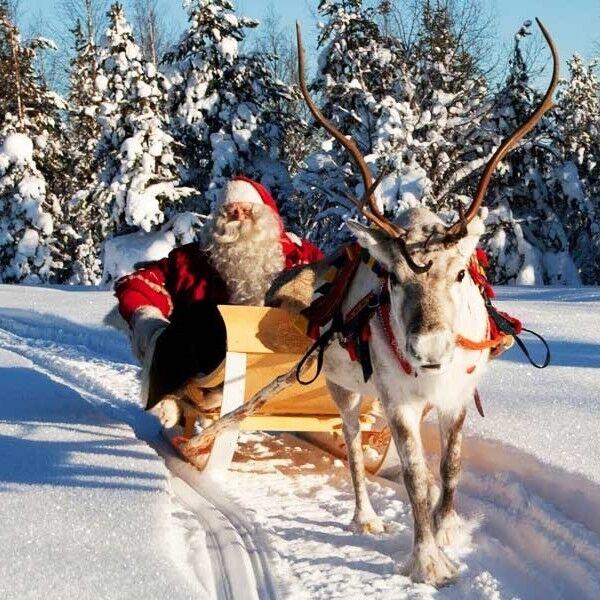 Туристическое агентство EcoTravel Экскурсионный авиатур «Новый год в Финляндии» - фото 1