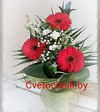 Магазин цветов Цветочник Букет красных гербер - фото 1