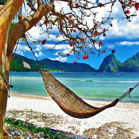 Туристическое агентство Дирижабль Пляжный авиатур во Вьетнам, Нячанг, Rt Deluxe Hotel 3* - фото 1
