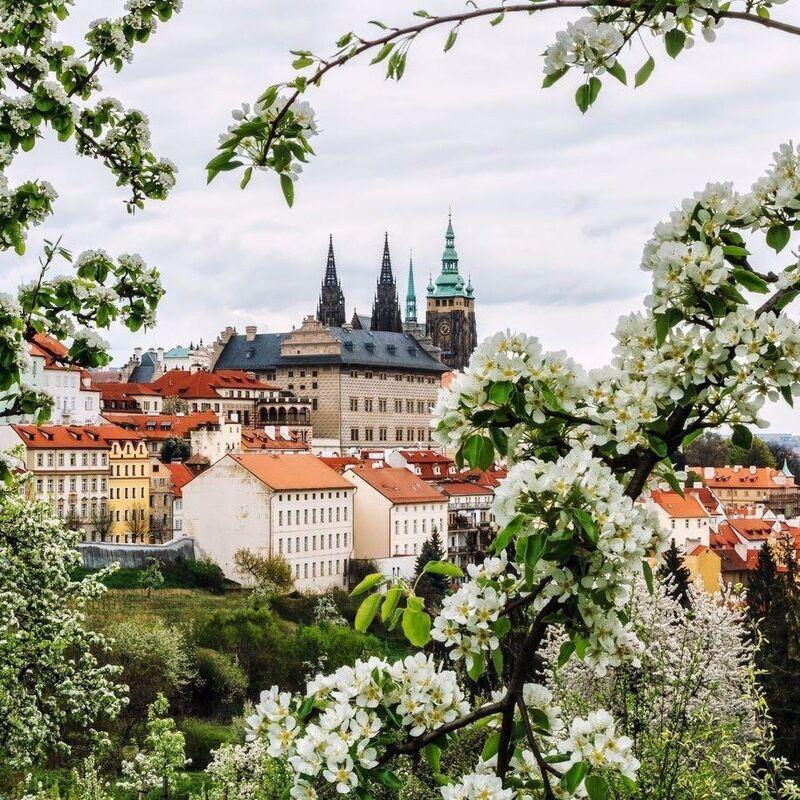 Туристическое агентство Респектор трэвел Экскурсионный авиатур в Прагу, 3 дня - фото 4