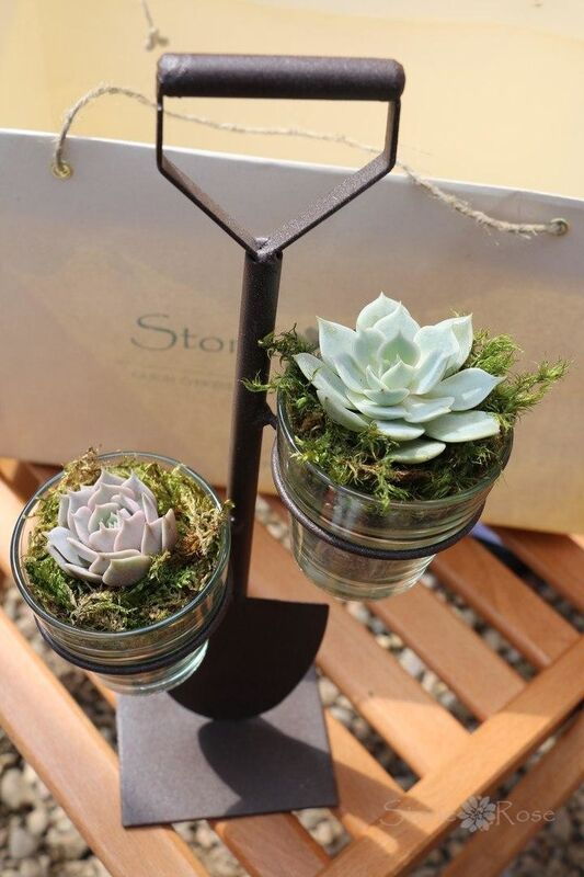 Магазин цветов Stone Rose Лопатка с суккулентами - фото 1