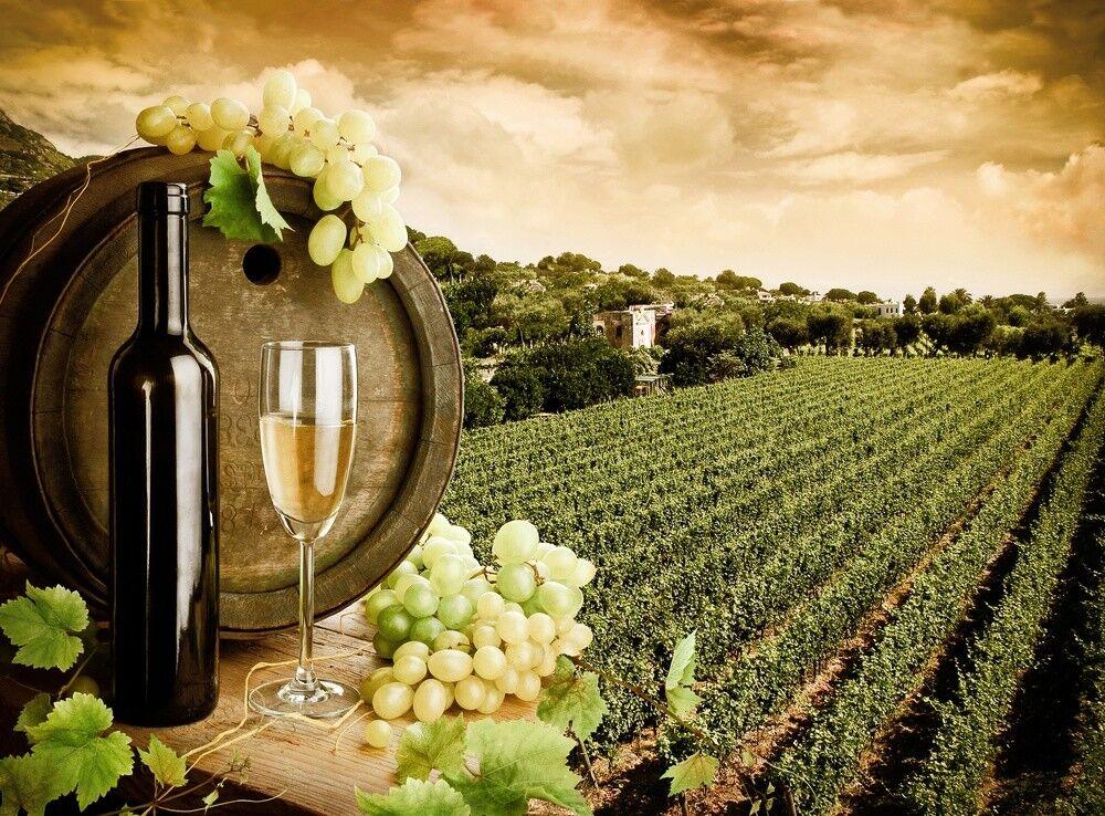 Туристическое агентство ТурТрансРу Автобусный экскурсионный тур 1VB «Праздник молодого вина Божоле» - фото 1
