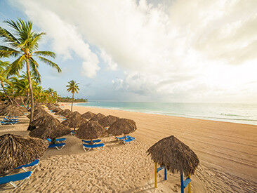 Туристическое агентство Jimmi Travel Отдых  в Доминикане, Caribe Club Princess Beach Resort & SPA 4* - фото 5