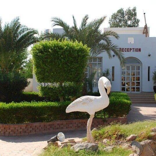 Туристическое агентство Санни Дэйс Пляжный авиатур в Египет, Шарм-Эль-Шейх, The Regnum Hotel 4* - фото 1