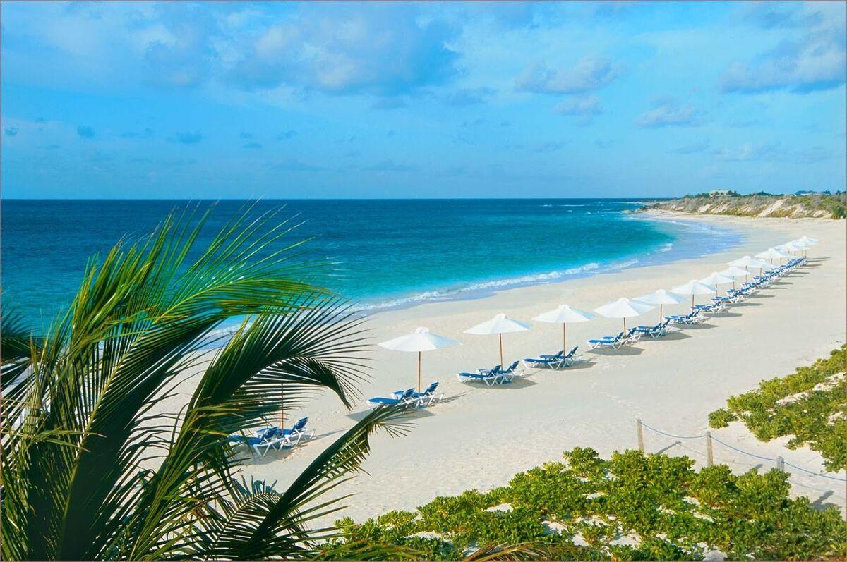 Туристическое агентство VIP TOURS ОАЭ, Шарджа, Sharjah Premiere Hotel & Resort - фото 1