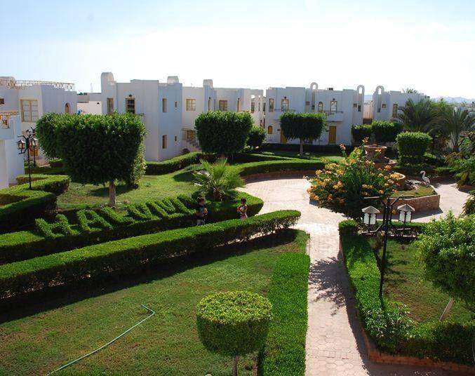 Туристическое агентство Санни Дэйс Пляжный авиатур в Египет, Шарм-Эль-Шейх, The Regnum Hotel 4* - фото 7