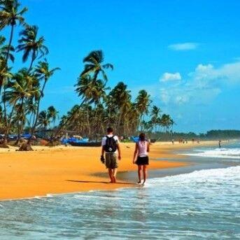 Туристическое агентство EcoTravel Пляжный aвиатур в Индию, Гоа, Whispering Wood by the Verda 3* - фото 1