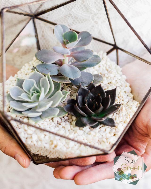 Магазин цветов StarGreen Три каменные розы - фото 2