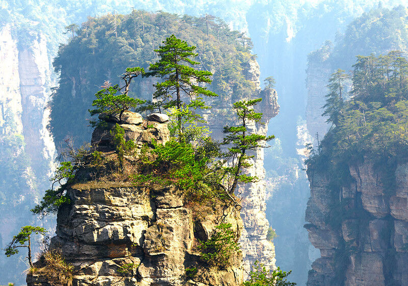Туристическое агентство Royal Sky Завораживающая Япония + летающие горы Аватар - фото 5