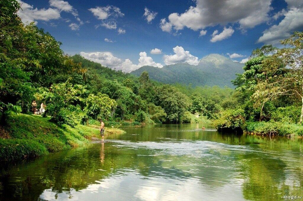 Туристическое агентство Южный край Пляжный тур на Шри-Ланку - фото 5
