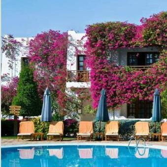 Туристическое агентство EcoTravel Пляжный авиатур в Египет, Шарм-эль-Шейх, Mexicana Sharm Resort 4* - фото 1