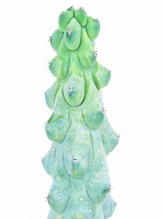 Магазин цветов Stone Rose Myrtillocactus geometrizans (Митриллокактус геометрический) - фото 2