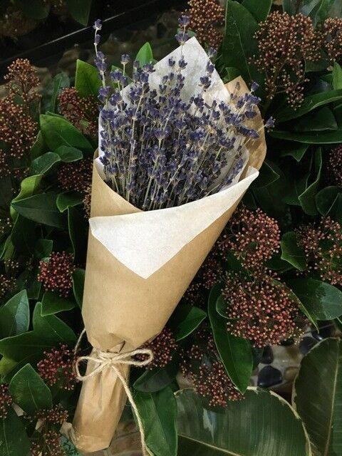 Магазин цветов VGosti.by Букет «Лаванда» (сухоцвет) - фото 1