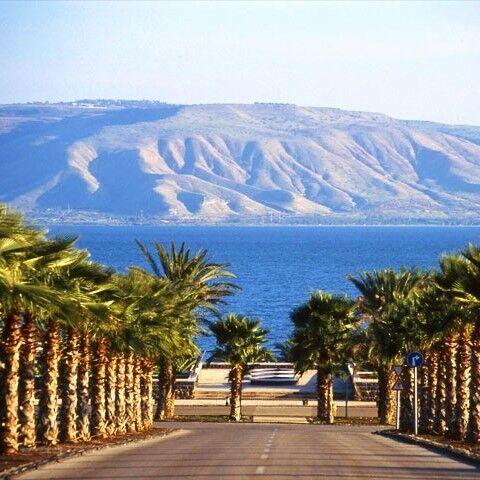 Туристическое агентство Отдых и Туризм Экскурсионный авиатур «Путешествие по Святой Земле Израиля» - фото 1
