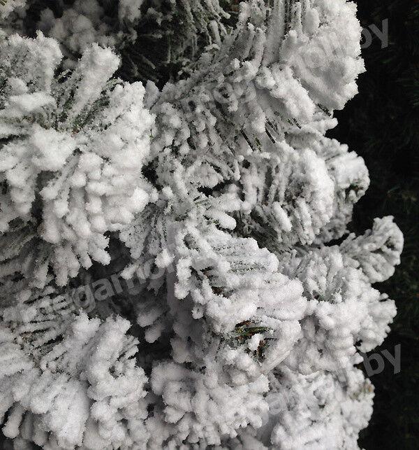 Елка и украшение GreenTerra Ель «Оливия» заснеженная, 1.8 м - фото 2
