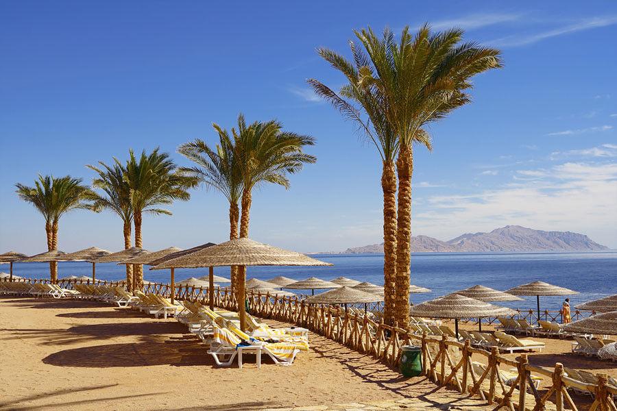 Туристическое агентство VIP TOURS Египет из Киева GOLDEN PARADISE 5* - фото 3