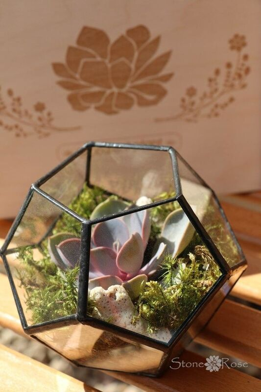 Магазин цветов Stone Rose Флорариум «Глоб» - фото 1