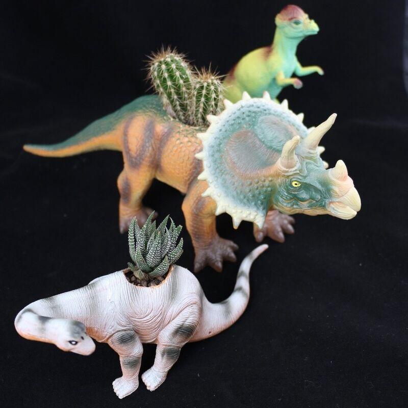 Магазин цветов Stone Rose Динозавры с суккулентами - фото 1
